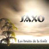 Les bruits de la forêt (Original Mix - Saxo - 694)