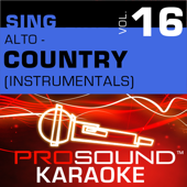 From This Moment On (Karaoke Instrumental Track) [In The Style Of Shania Twain]-ProSound Karaoke Band