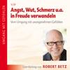 Robert Betz - Angst, Wut, Schmerz u.a. in Freude verwandeln artwork