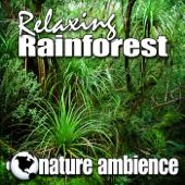 Relaxing Rainforest (Nature Sounds) - Single