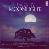 Raga By Moonlight, Vol. 2