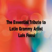 Drew's Famous #1 Latin Karaoke Hits: Sing Like Luis Fonsi