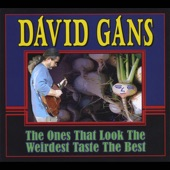 David Gans - Down to Eugene