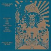 Colour Haze - Earth