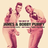 James & Bobby Purify - I'm Your Puppet