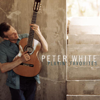 Peter White - Playin' Favorites  artwork