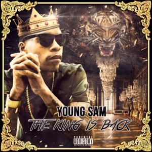 The King Is Back Mp3 Download