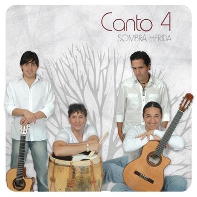 Sombra Herida - Canto 4