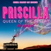 Priscilla - Queen of the Desert (Original Broadway Cast Recording)