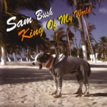 Sam Bush - A Better Man