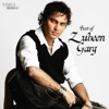 Best of Zubeen Garg