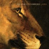 William Fitzsimmons - Centralia