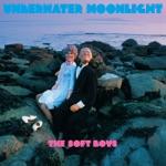 The Soft Boys - Dreams (Bonus Track)