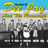 Dee Jay & The Runaways - She's a Big Girl Now