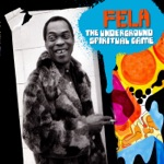 Fela Kuti - Mr. Follow Follow