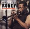 Solar  - Wallace Roney