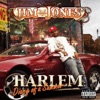 Harlem Diary of a Summer