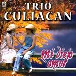 Trio Culiacan - Negra Consentida