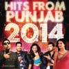 Hits From Punjab 2014