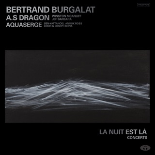bertrand burgalat sur apple music. Black Bedroom Furniture Sets. Home Design Ideas
