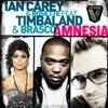 Amnesia (feat. Timbaland & Brasco) - EP, Ian Carey & Rosette