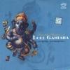 Powerful Vibrations of Lord Ganesha