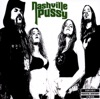 Say Something Nasty, Nashville Pussy