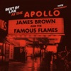 Best of Live At the Apollo: 50th Anniversary, James Brown