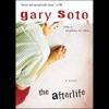 The Afterlife (Unabridged) AudioBook Download