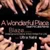 A Wonderful Place (Sean McCabe Remix) [feat. Ultra Naté] ジャケット写真