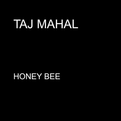Honey Bee - Single - Taj Mahal