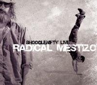 Radical Mestizo by Shooglenifty on Apple Music