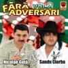 Fara Adversari Vol. 2, Nicolae Guta & Sandu Ciorba