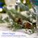 Hark! The Herald Angels Sing - Instrumental Christmas Music