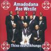 Amadodana Ase Wesile - Thixo Ova Izikhungo artwork
