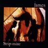 Strip-Mine, James