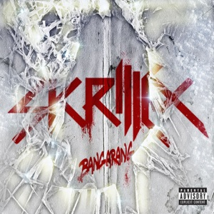 Skrillex, Kill the Noise & 12th Planet - Right On Time