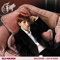 Hot In Herre (DJ-Kicks) - Single Mp3 Download