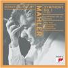 Mahler Symphony No 1 Titan Adagio from Symphony No 10