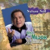 Solo Lo Mejor - 20 Éxitos: Nelson Ned