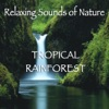 Relaxing Sounds of Nature Tropical Rainforest