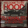 Welcome to My Hood (feat. Rick Ross, Plies, Lil Wayne & T-Pain) - Single, DJ Khaled