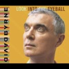 Look Into the Eyeball, David Byrne