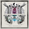 Movements of the Heart - Tony Anderson