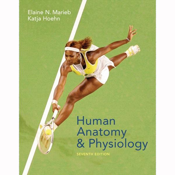 VangoNotes for Human Anatomy & Physiology, 7/e: Topics 16-29 ...