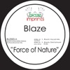 The Blaze Mixes: Force of Nature - EP (Vinyl, Collection) ジャケット写真
