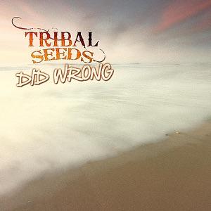 Tribal Seeds - Did Wrong