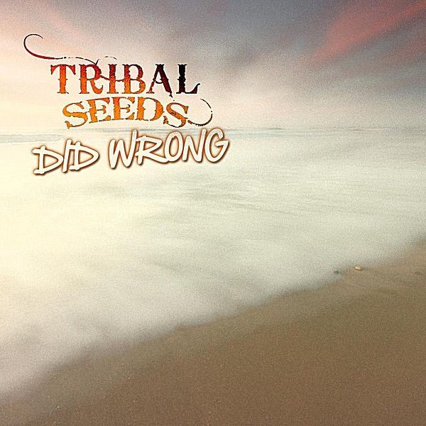 Did Wrong - Single