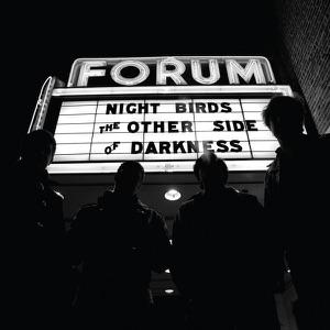 Night Birds - Demon Haunted World