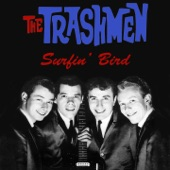 The Trashmen - Malaguena